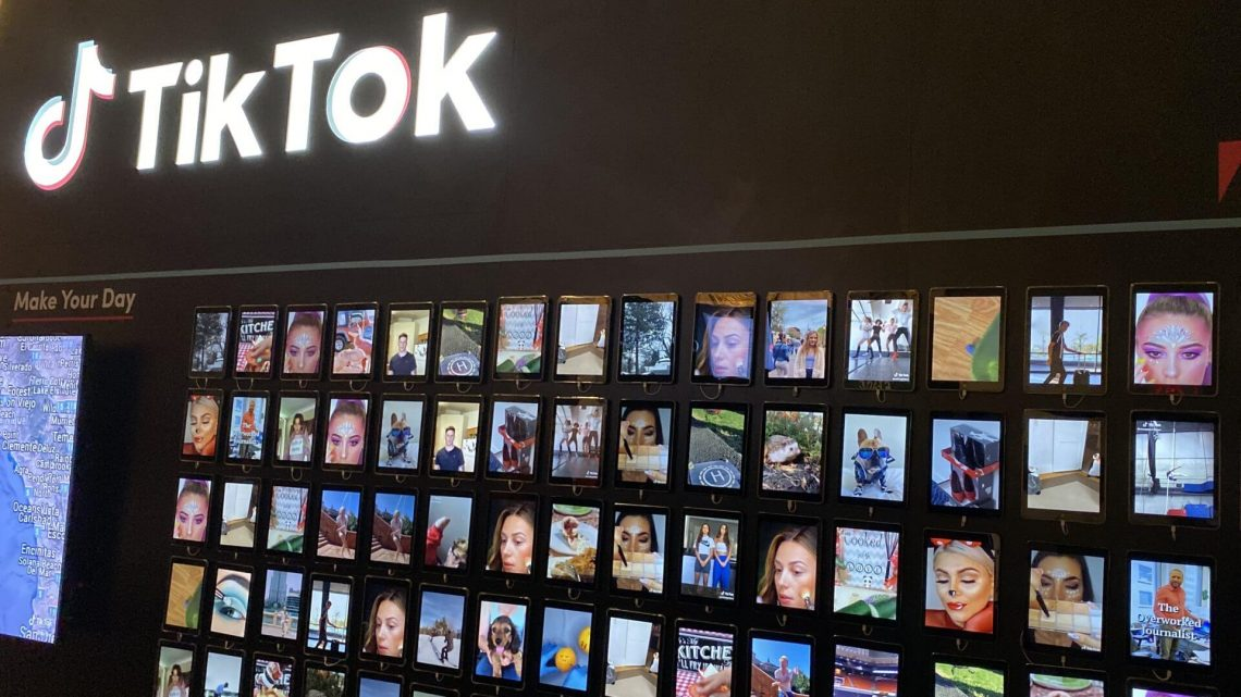 TikTok, the internet's shiny new toy