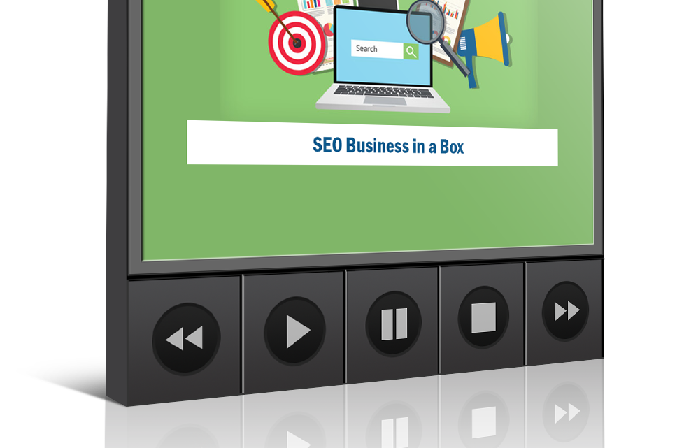 The SEO BUSINESS IN A BOX Free Download